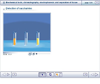 Biochemical tests; chromatography; electrophoresis and separation of tissues