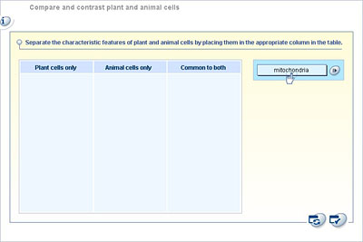 compare contrast plant and animal cells
