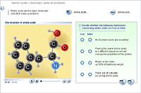 Amino acids – the basic units of proteins