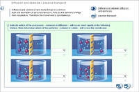 Diffusion and osmosis – passive transport