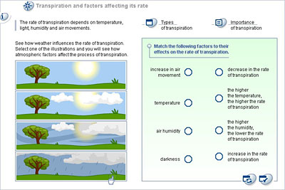 factors affecting transpiration in plants