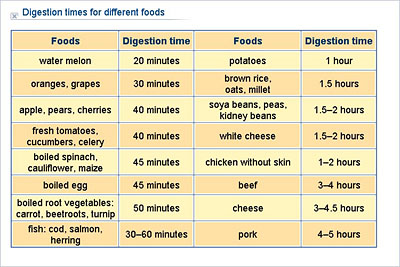 food digestion times