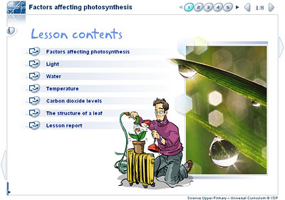 factors affecting photosynthesis in plants